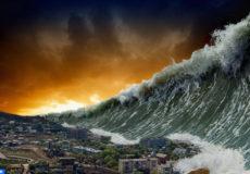Tsunami-wave1 copier