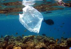 océans de plus en plus pollués par des microparticules de plastique