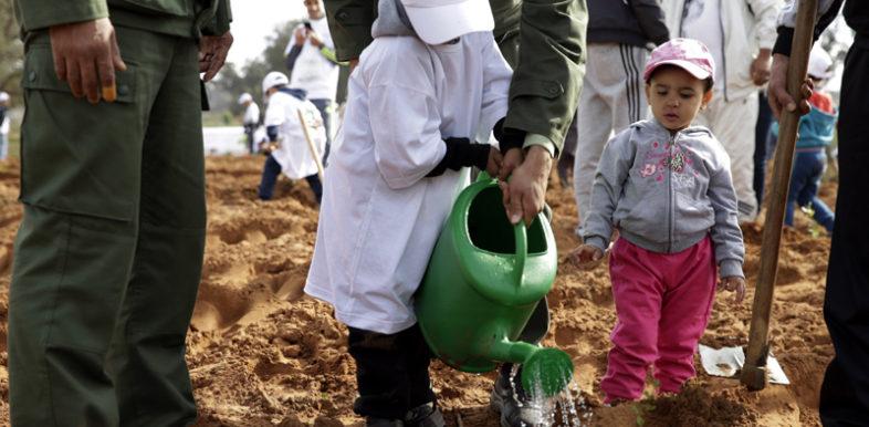 Le coup d'envoi de plantation de près de 1.500 arbustes sur une superficie de 1,5 ha a été donné, dimanche, à la forêt de Maâmora à Salé, dans le cadre de la 4ème édition de l'opération de reboisement initiée par MedZ Sourcing (Groupe CDG), en partenariat avec le Haut-commissariat aux eaux et forêts et à la lutte contre la désertification (HCEFLCD).