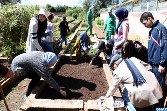 Jardins Exotiques De Bouknadel Des Ecolos S Initient Au Jardinage