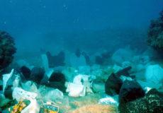 GhadiNews - Mediterranean plastic debris2635907182627490445 copier