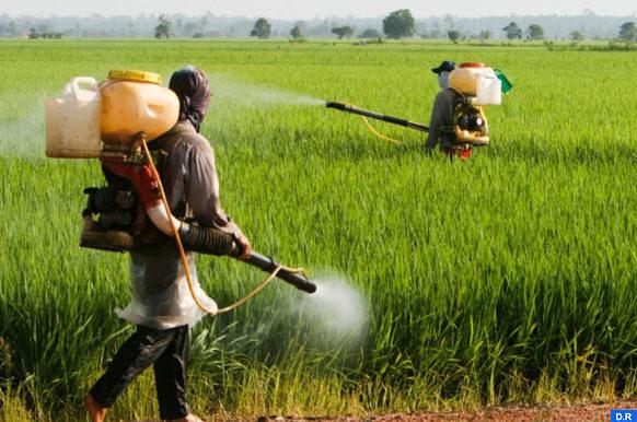 pesticide-usa