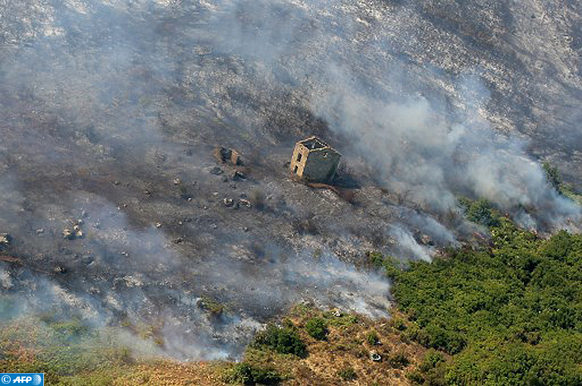 An aerial view taken on July 25, 2017 shows the fire devastated landscape in Biguglia, on the French Mediterranean island of Corsica. France asked for Europe's help on July 25 in fighting wild fires that have consumed swathes of forest in the southeast, one of which is raging near the popular resort of Saint-Tropez. / AFP PHOTO / PASCAL POCHARD-CASABIANCA