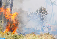 Incendie-forêt-Marrakech-M copier