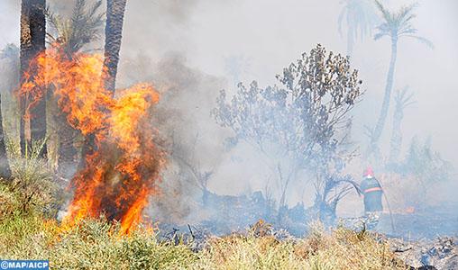 Incendie forêt Marrakech-M