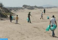 plages-propres-essaouira-504x297