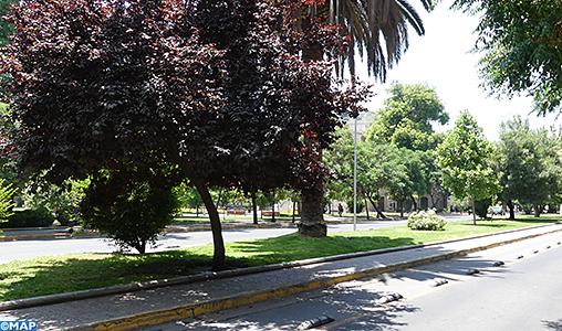 Chili-preservation environnement-M
