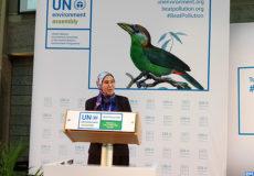 Nezha El Ouafi -séance plénière -segment ministériel -ANUE-3 à Nairobi-M ECOLOGY