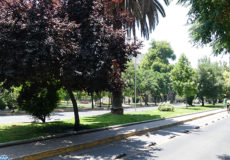 Le Chili récompensé pour la création de parcs naturels en Patagonie - MAP ECO