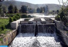 Lac Amghass II, Azrou (22/03/17). Lac, rivère, eau, faune, floore, nature, environnement, nature