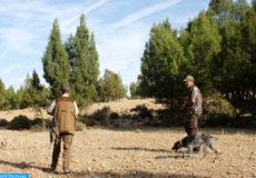 La nouvelle saison de chasse 2013/2014 démarre, dimanche (06/10/13), dans la région de l'oriental  (MAP/Essaber Hassan)