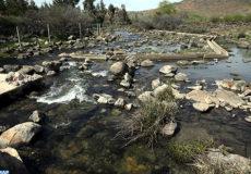 Lac Amghass II, Azrou (22/03/17). Lac, rivère, eau, faune, floore, nature, environnement