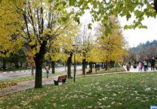 Ifrane, paysage urbain, espaces verts, automne, ville propre