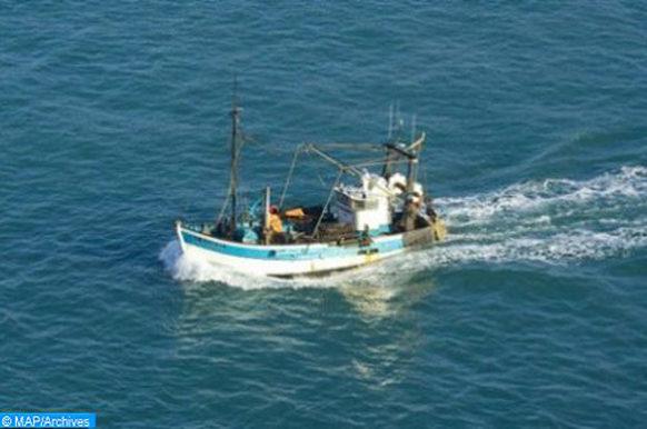 pêche pélagique