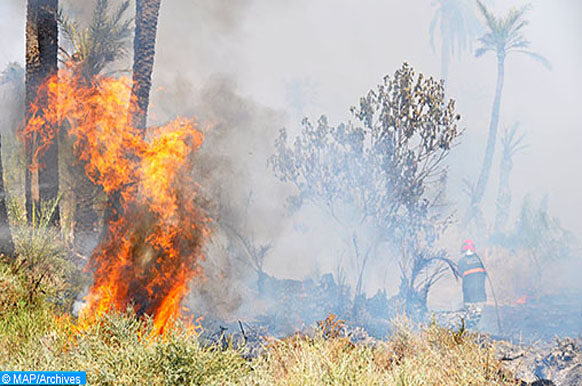 Incendie-forêt-Marrakech-ECO