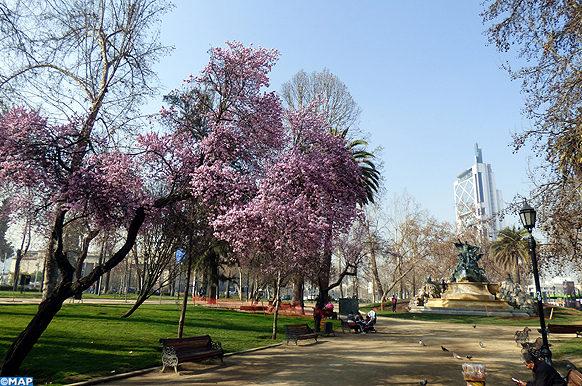 Parc-Forestier-Santiago-Chili-MAPECOLOGY