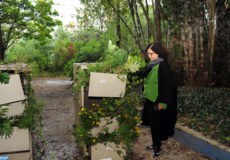 """Le vernissage de la première édition de l'exposition """"Etat d'Urgence d'Instants Poétiques"""", montée à l'initiative de l'opératrice culturelle Bouchra Salih, s'est déroulé jeudi (18/10/18) dans l'enceinte de Jardin d'essais botaniques à Rabat."""