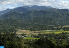epa05176113 A general view of a forested area of Antipolo city, east of Manila, Philippines, 23 February 2016. According to a report of the United Nations Food and Agriculture Organization (FAO), among the 234 countries surveyed, the Philippines ranks fifth in terms of greatest annual gain in forest area. From 2010 to 2015, Philippines was able to increase its forest area by 240,000 hectares per year - top four that hold the record are China, Australia, Chile, and the United States.  The Philippines hosts the Asia-Pacific Forestry Week 2016 where in representatives of international and non-government organizations from over 30 countries gather in Clark Freeport Zone, Pampanga province.  EPA/FRANCIS R. MALASIG