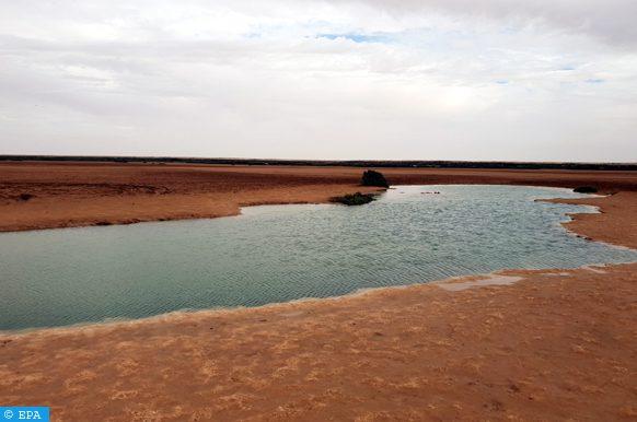 Les niveaux d'eau