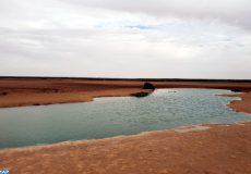 La Sebkha d'Imlily, un site écologique singulier qui reflète la richesse et la diversité naturelle de la région de Dakhla-Oued Eddahab (20/02/19)