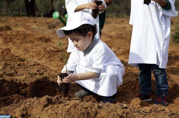 Environnement reboisement arbres arbustes enfants carbon émissions CO2