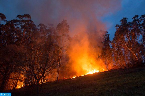 nombre d'incendies provoqués
