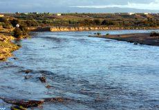 L'Agence du bassin hydraulique de la Moulouya (ABHM) a organisé, jeudi (01/11/18) à Guercif, une journée de sensibilisation axée sur l'impératif d'une utilisation rationnelle de l'eau.