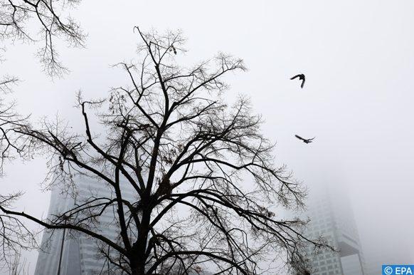Pologne lutte contre le smog
