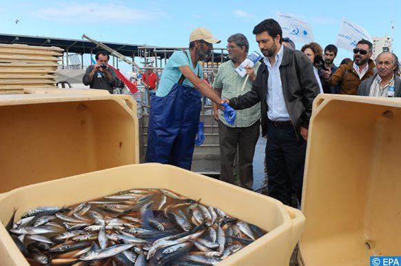 ressources de la pêche