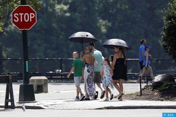 précipitations plus faibles