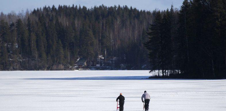 paysage en Finlande