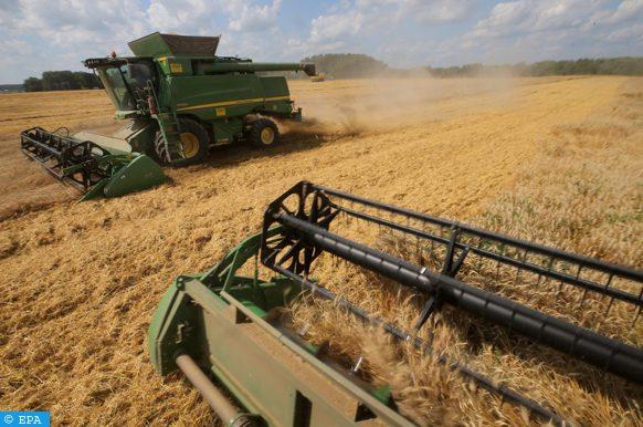 التكنولوجيا الرقمية أصبحت قوة مهمة لإحداث فرص جديدة للمزارعين
