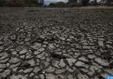 epa07483999 Cracked, dry dirt covers a part of La Sabana Metropolitan Park lagoon, which has been affected by the droughts produced by El Niño, in San Jose, Costa Rica, 03 April 2019. Latin America said it would commit to protecting water sources and boost investments to comply with the UN Sustainable Development Goal (ODS) on water and sanitation, after the V Latin American Conference on Water and Sanitation (LATINOSAN), which ended on Wednesday in Costa Rica.  EPA-EFE/JEFFREY ARGUEDAS
