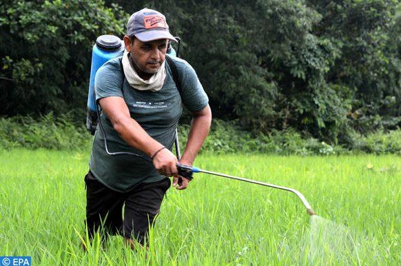 travailleurs agricoles