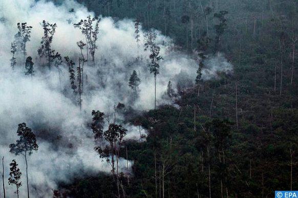 feux de forêts en Indonésie
