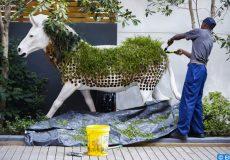 Zenata lancera une alliance des villes durables africaines