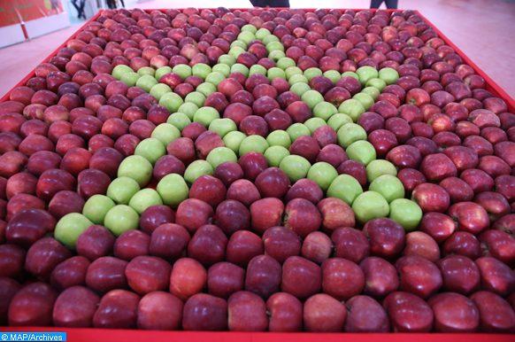 pommes à Bouzmou