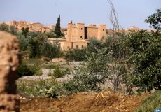 kasbah à Kelâat Mgouna (Tinghir)