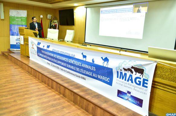 """Séminaire international organisé à Rabat par l'Institut national de la recherche agronomique (INRA) sous le thème de """"la cryoconservation des ressources génétiques animales et les opportunités pour un développement durable de l'élevage au Maroc"""",en présence de décideurs, de professionnels et d'acteurs de développement de divers horizons. 200120-Rabat"""