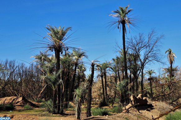 forum à Ouarzazate sur les la résilience climatique et le touriosme solidaire