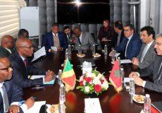 Le Ministre de l'Énergie, des Mines et de l'Environnement, M. Aziz Rabbah co-préside avec M. Serge Blaise Zoniaba, Ministre de l'Énergie et de l'Hydraulique de la République du Congo, l'ouverture de la première réunion du Comité Mixte Maroco-Congolais dans le domaine de l'Énergie. 13022020 - Rabat