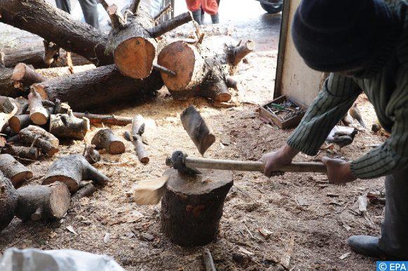 Des militants écologistes